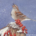 American Tree Sparrow Transparent Watercolor Step-by-Step