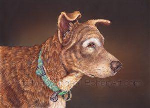 Mya– Mixed Breed Dog Transparent Watercolor