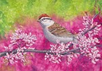 Chipping Sparrow 7x10 inch Transparent Watercolor