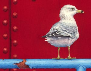 Ring-billed Gull (detail from 18x24 inch transparent watercolor on arches 140lb HP paper)