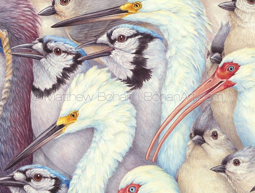 Whites and Blues (detail from 18x24 inch Transparent Watercolor on Arches 140lb HP paper)